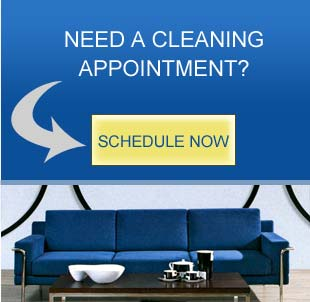 Schedule a Cleaning Appointment